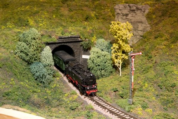 Personenzug fährt aus dem Bahnhof Moorheide aus
